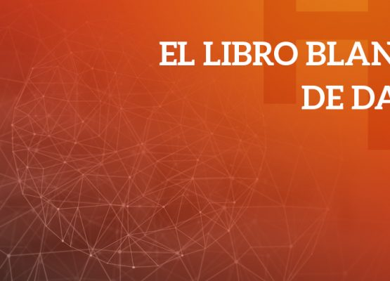 El Libro Blanco de Data: un marco de referencia para la explotación de datos en marketing digital